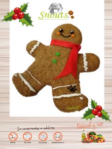 Cookie Gingerman